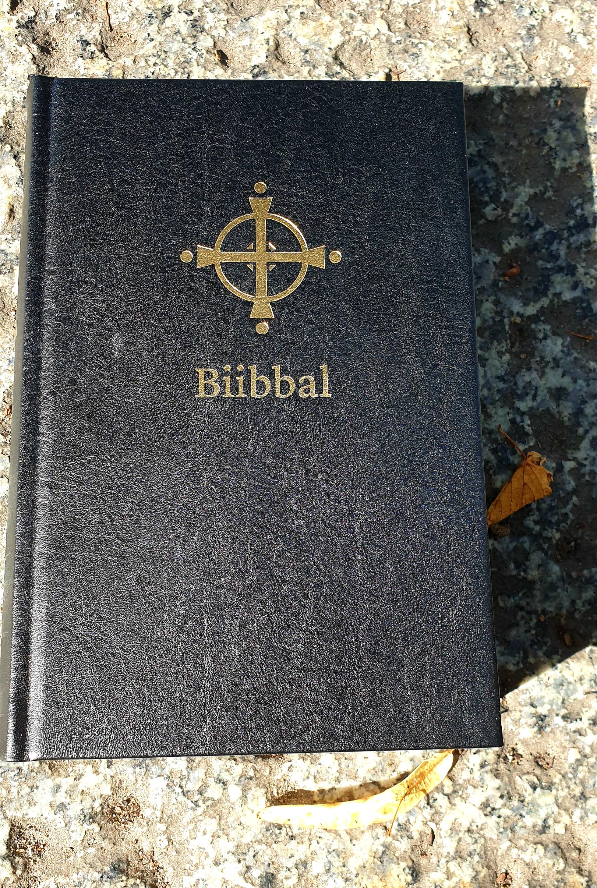 Bibeln på nordsamiska via bibelbutiken