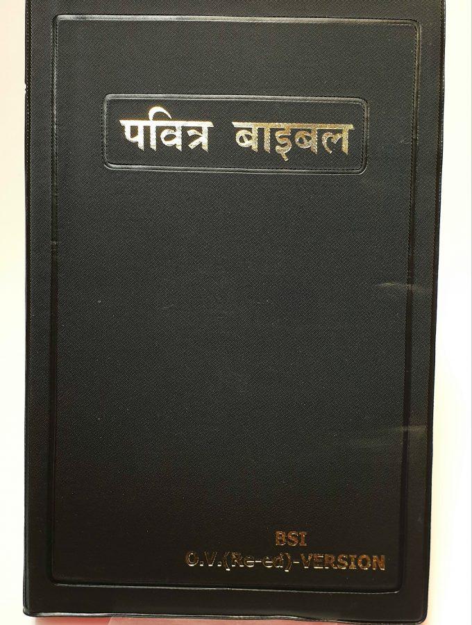 Artikelnummer 2481 Hindi utländsk bibel via bibelbutiken.se